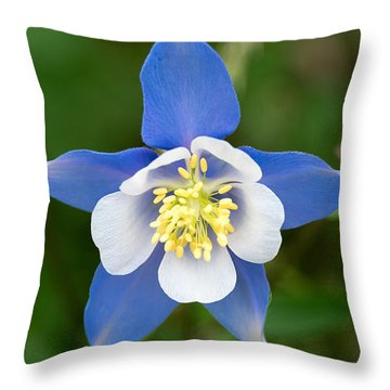Throw Pillow featuring the photograph Colorado Blue by Sandy Molinaro