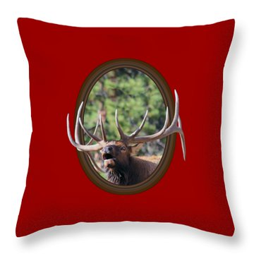 Throw Pillow featuring the photograph Colorado Bull Elk by Shane Bechler