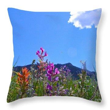 Throw Pillow featuring the photograph Colorado Colors by Alan Johnson