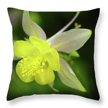 Colorado Columbine Throw Pillow by Marie Leslie