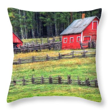 Colorado Countryside  Throw Pillow