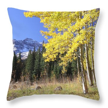 Colorado Dreamin' Throw Pillow by Eric Glaser