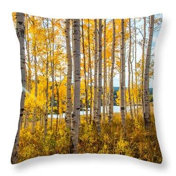 Colorado Expectations Throw Pillow