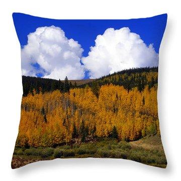 Colorado Fall 2 Throw Pillow by Marty Koch