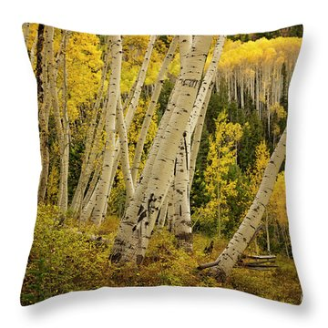 Colorado Fall Aspen Grove Throw Pillow