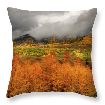 Throw Pillow featuring the digital art Colorado Fall Colors  by OLena Art Brand