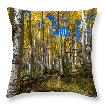 Colorado Fall Hike In The Aspens Throw Pillow by Michael J Bauer