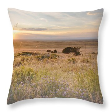 Colorado Field Sunset Landscape Throw Pillow by Andrea Hazel Ihlefeld