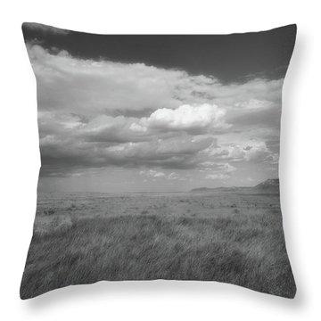 Colorado Grassland Throw Pillow