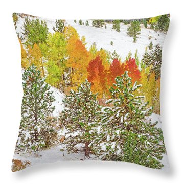 Colorado Is Stunningly Beautiful. Here's One Example Among Countless Others.  Throw Pillow