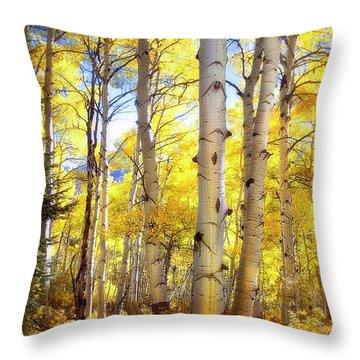 Aspen Magic   Throw Pillow