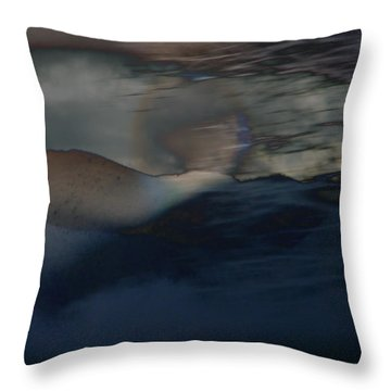 Colorado Moonscape Throw Pillow by Lenore Senior