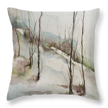 Colorado Morning Throw Pillow