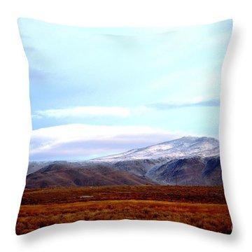 Colorado Mountain Vista Throw Pillow