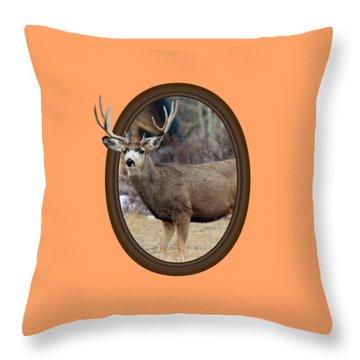 Colorado Muley Throw Pillow