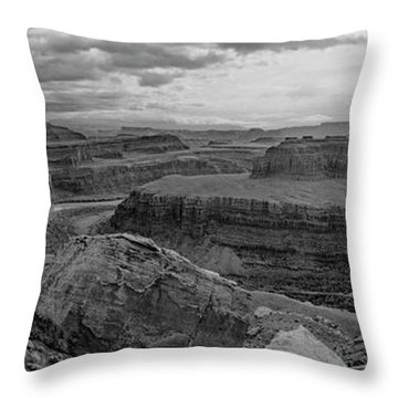 Colorado River Gooseneck Pano Throw Pillow
