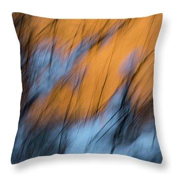 Colorado River Snow Banks Throw Pillow