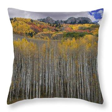 Colorado Splendor Throw Pillow