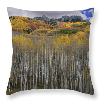 Colorado Splendor Throw Pillow