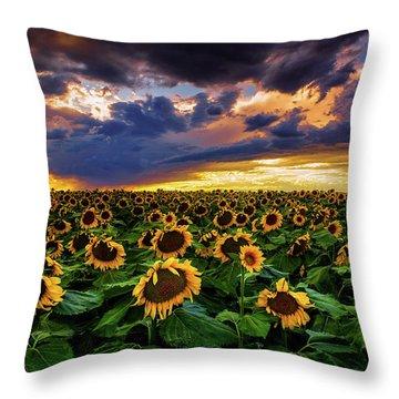Colorado Sunflowers At Sunset Throw Pillow