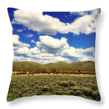 Colorado Vista Throw Pillow by L O C