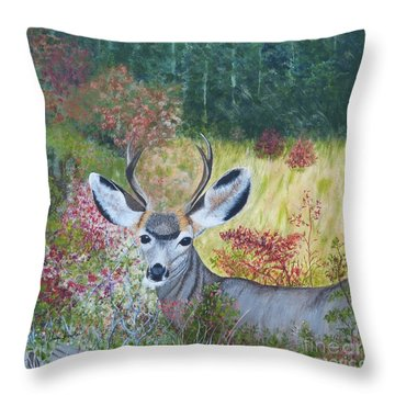 Colorado White Tail Deer Throw Pillow