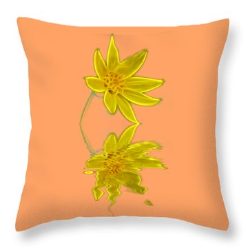 Colorado Wildflower Throw Pillow