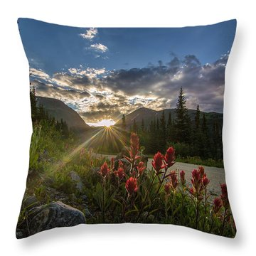 Colorado Wildflowers Under Evening Sun Throw Pillow