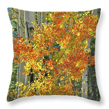 Colorful Aspen Along Million Dollar Highway Throw Pillow