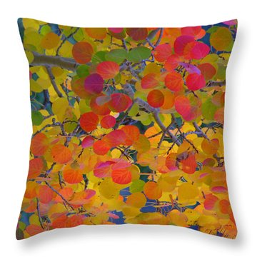 Colorful Aspen Throw Pillow