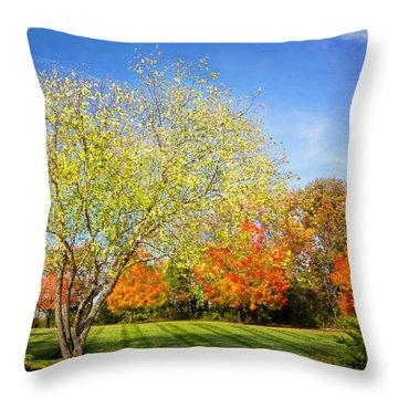 Colorful Backyard Scene Throw Pillow