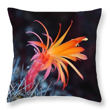 Colorful Cactus Flower Throw Pillow by Rona Black