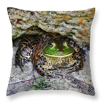 Throw Pillow featuring the photograph Colorful Camo by Al Powell Photography USA