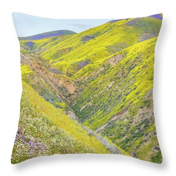 Throw Pillow featuring the photograph Colorful Canyon by Marc Crumpler