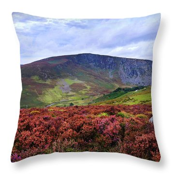 Throw Pillow featuring the photograph Colorful Carpet Of Wicklow Hills by Jenny Rainbow