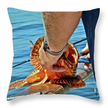Colorful Catch Throw Pillow