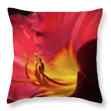 Colorful Cobras Throw Pillow