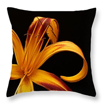 Throw Pillow featuring the photograph Colorful Curls by Judy Vincent