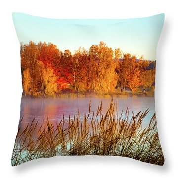 Colorful Dawn On Haley Pond Throw Pillow