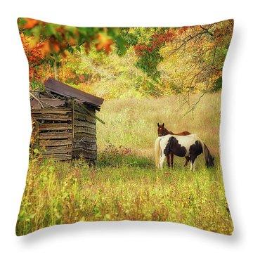 Colorful Display Throw Pillow
