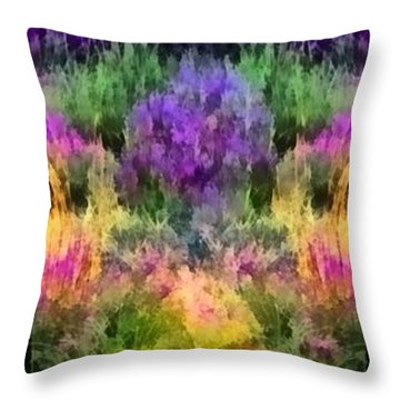 Colorful Field Of A Lavender Throw Pillow