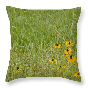 Throw Pillow featuring the photograph Colorful Field by Wanda Krack