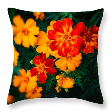 Throw Pillow featuring the photograph Colorful Flowers by Silvia Ganora