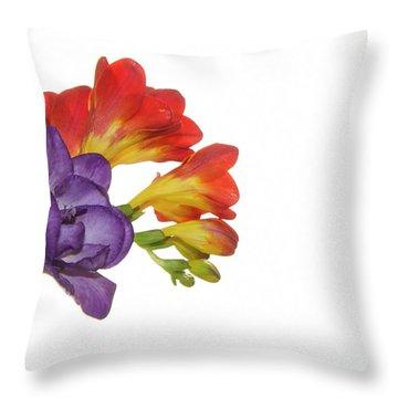 Colorful Freesias Throw Pillow by Elvira Ladocki