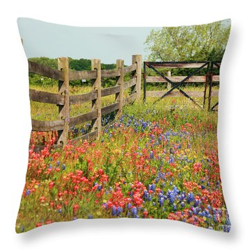 Colorful Gate Throw Pillow