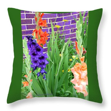 Colorful Gladiolas Throw Pillow
