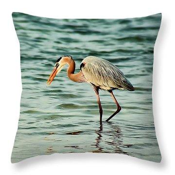 Colorful Heron Throw Pillow