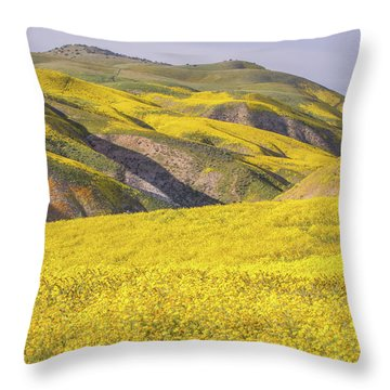 Throw Pillow featuring the photograph Colorful Hill And Golden Field by Marc Crumpler