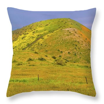Throw Pillow featuring the photograph Colorful Hill by Marc Crumpler