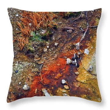 Colorful Hot Pool Throw Pillow